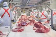 Работа на производственных линиях мясокомбината в Польше