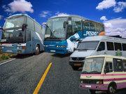 Замовлення та оренда автобусів та мікроавтобусів!!!
